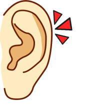 東山紀之さんの耳は、積極的で好奇心旺盛な耳